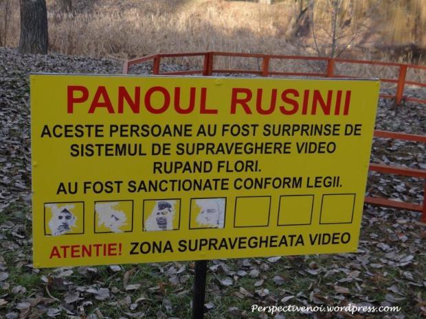 Afis parc Bucov Ploiesti